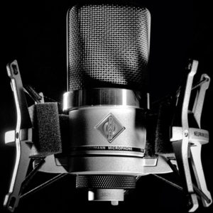 Neumann TLM 102 Nickle