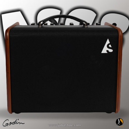 Acoustic Solutions ASG-8 120 – Godin