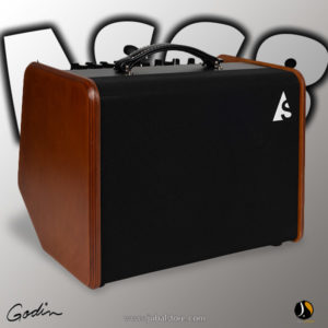 Acoustic Solutions ASG-8 120 - Godin